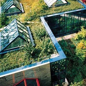 Dachbegrünung Leymann GmbH