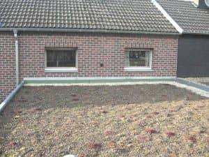 Dachbegrünung und Umweltschutz